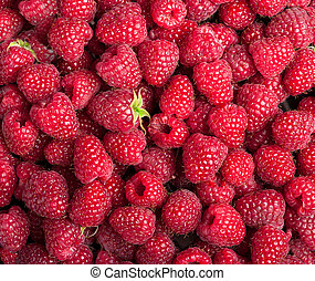 Many sweet fresh raspberry fruit