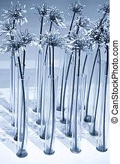 Many tall flower vases
