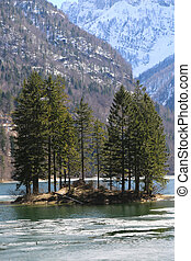 many tree in the island on the alpine lake called Lago...