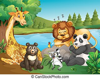 Many types of wild animals by the lake