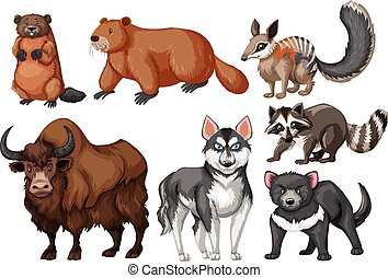 Many types of wild animals
