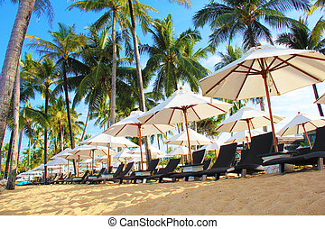 many umbrella and beach chairs under swaying palms on the...