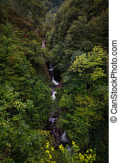 many waterfalls between green trees on a cliff
