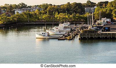 Many White Fishing Boats at Dock at Dawn