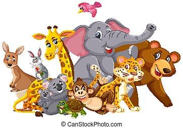 Many wild animals on white background