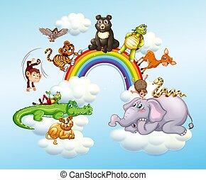 Many wild animals over the rainbow