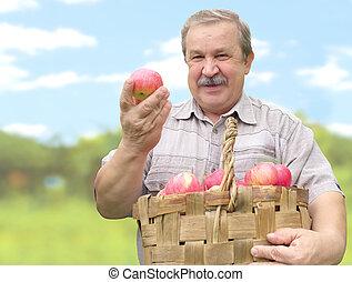 manzana, cosechar