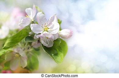 manzana, flores