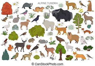 map., 植物, 自然, 鳥, apine, 動物, 地域, ツンドラ, biome, 地球である, デザイン, ...