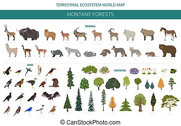 map., naturale, uccelli, animali, regione, foresta, biome,...