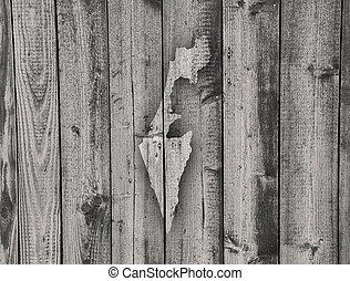 Map of Israel on weathered wood