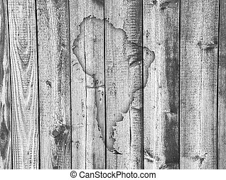 mapa, américa, madeira, sul, resistido