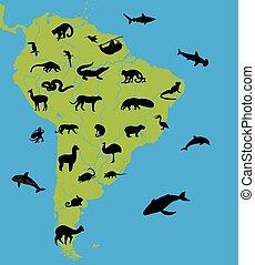 mapa, ameryka, zwierzęta, południe