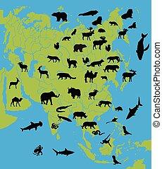 mapa, animais, ásia