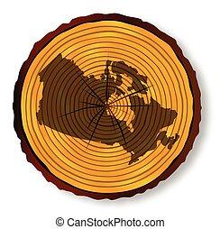 mapa canadá, seção, madeira