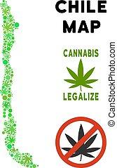 mapa, folhas, livre, cannabis, realeza, chile, composição