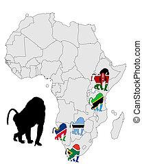 mapa, gama, babuíno