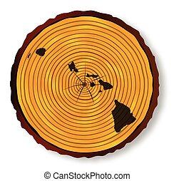 mapa, havaí, madeira