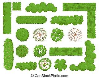 mapa, planta, elementos, jogo, olhar, topo, parque, isolado, árvores, árvore, bush, vetorial, floresta verde, acima, bushes., vista