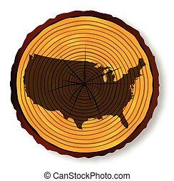 mapa, seção, eua, madeira