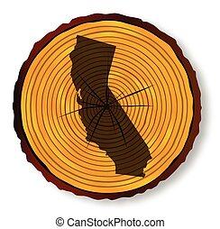 mapa, seção, madeira, fim, califórnia