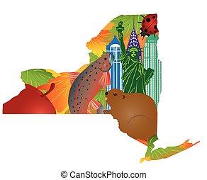mapa, urzędnik, ilustracja, symbolika, stan, york, nowy