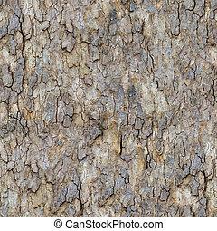 Maple Bark. Seamless Texture. - Bark of Maple Seamless...