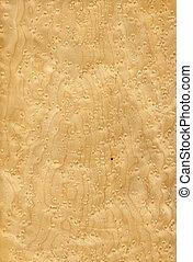 Texture of maple bird's eye (high-detailed wood texture series)