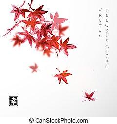 maple., foglie, giapponese, rosso