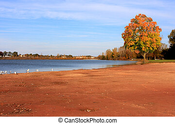 Maple Lake