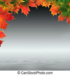 Maple Leaf Abstract Design