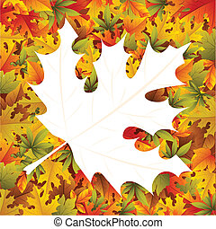 Maple Leaf Background