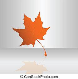 Maple leaf - Vector illustration of maple leaf