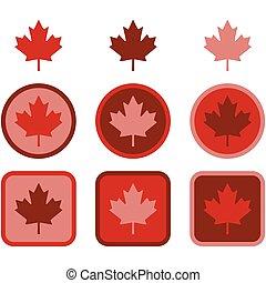 Maple leaf flat design - Icon set showing a maple leaf...