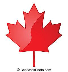 Maple leaf - Glossy illustration of a red maple leaf, symbol...