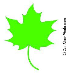 Maple Leaf Green