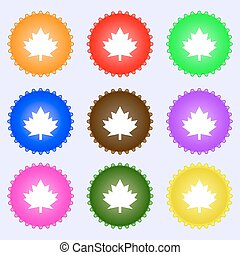 Maple leaf icon. A set of nine different colored labels. Vector
