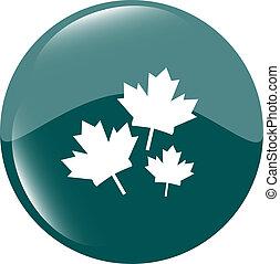 Maple leaf icon on green sticker