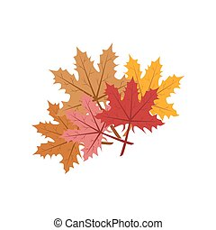Maple leaf illustration