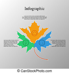 Maple leaf infographic elements
