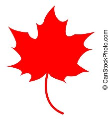 Maple Leaf Isolated