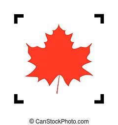 Maple leaf sign. Vector. Red icon inside black focus corners on white background. Isolated.