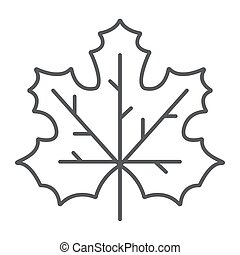 Maple leaf thin line icon, canada and nature, autumn sign, vector graphics, a linear pattern on a white background.