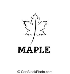 maple leaf vector design template