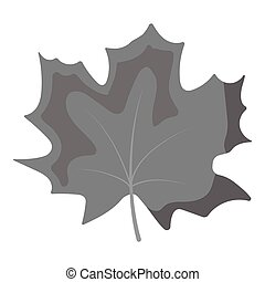 Maple Leaf vector icon in monochrome style for web