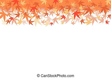 Maple Leaf - Vector illustration.