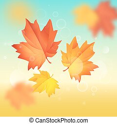 Maple leaf vector illustration. Hello autumn