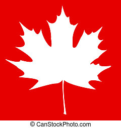 Maple Leaf White