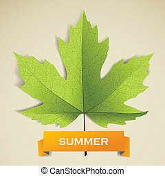 Maple leave with summer banner