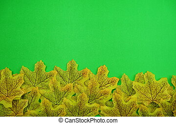 maple leaves background with Space for copy on green background